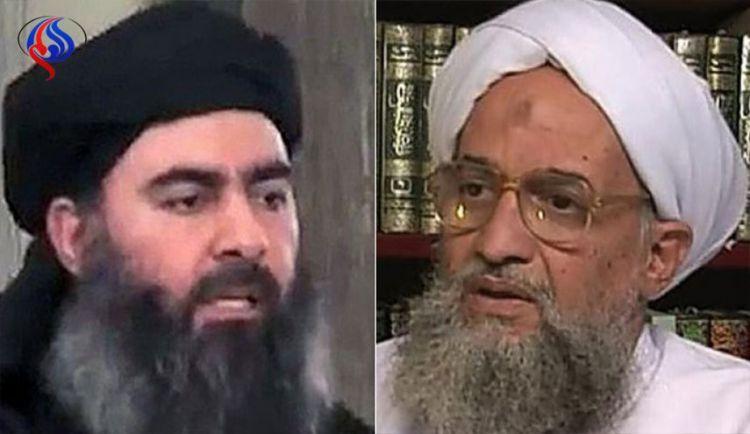 داعش والقاعدة.. الى الذئاب المنفردة درّ