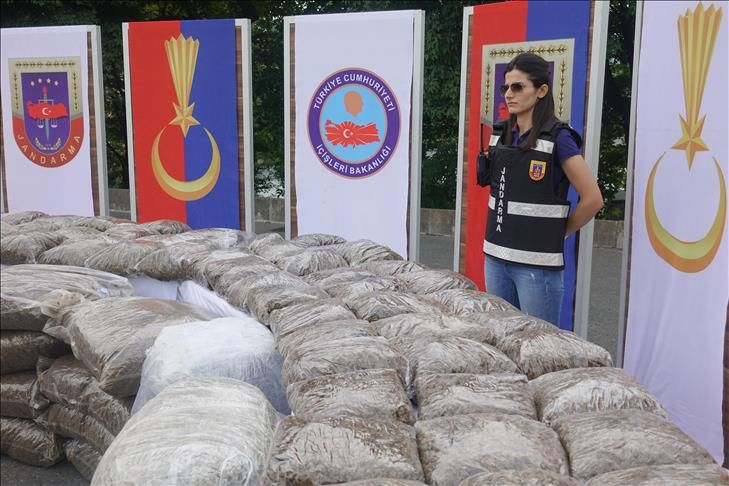 Turkish gendarmerie seizes 800 kg of skunk weed