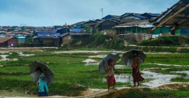 Key member resigns from Myanmar advisory panel on Rohingya crisis
