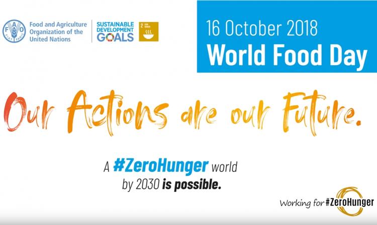 Сегодня Международный день продовольствия - ВИДЕО