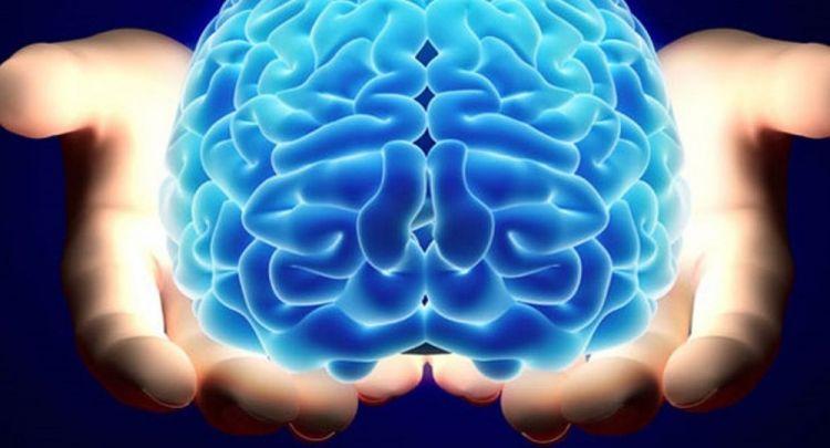 tr/news/sience/334893-uzuntu-beynin-iki-bolgesi-arasinda-sohbeti-arttiriyor