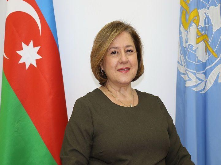 """Gürcistan'da """"domuz gribi"""" virüsü yok - Dünya Sağlık Örgütünün Azerbaycan temsilcisi - VİDEO"""