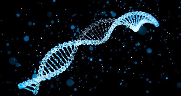 en/news/sience/367584-how-your-dna-could-solve-a-murder