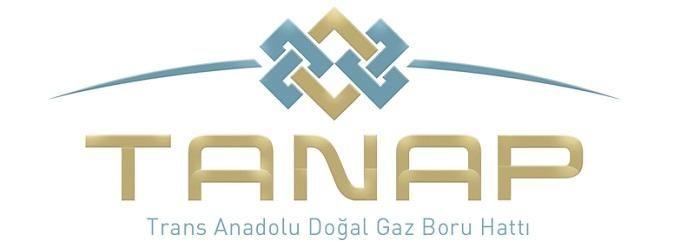 TANAP получил международную награду
