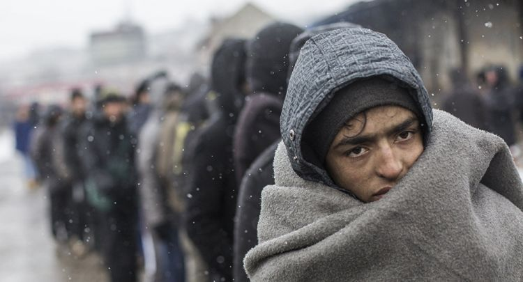 اليوم العالمي للاجئين - 20 حزيران/يونيه - الفيديو