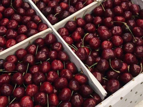 Жители Баку в шоке от цен на сезонные фрукты и овощи