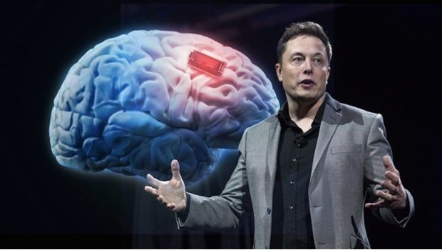 Elon Musk wants to connect human brain to computer