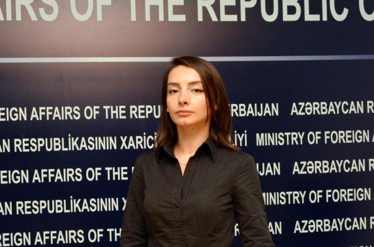 Спикер МИД о позиции Азербайджана по Джамму и Кашмиру