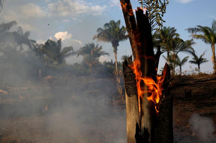 Forest fires in Brazil surge as deforestation accelerates
