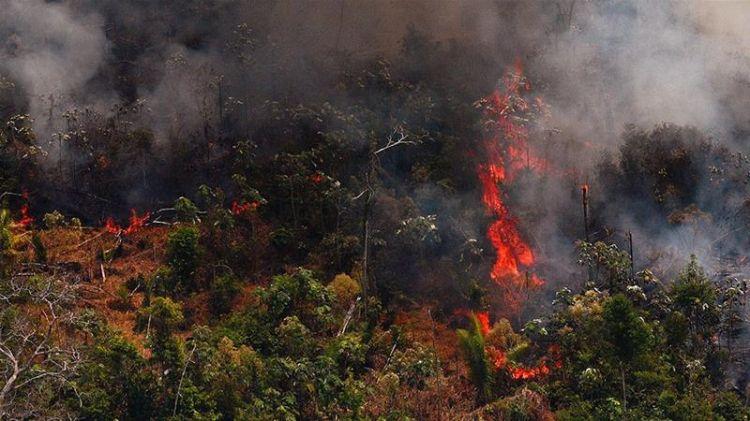 Brazil's Bolsonaro sends army to fight Amazon firesg