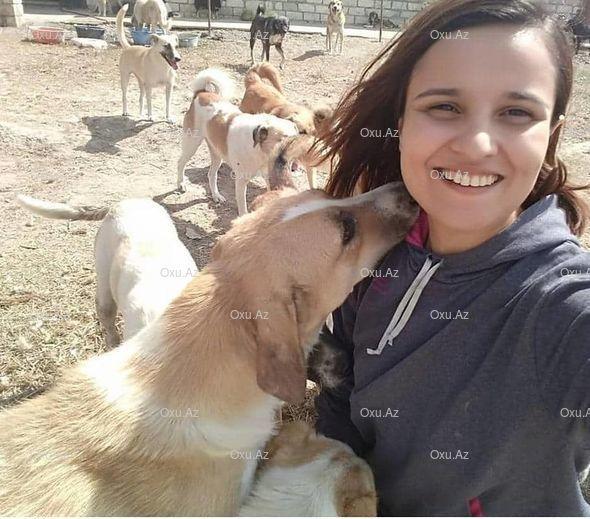 Девушки из Хачмаза содержат приют для уличных собак - ФОТО - ФОТО