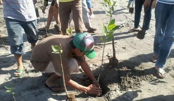 ЕС: Акции по озеленению в Азербайджане - прекрасная инициатива для сохранения экологии