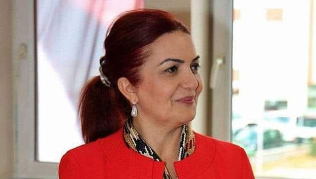 Zangezur Nasıl Ermenilerin oldu? - Prof. Dr. Aygün Attar