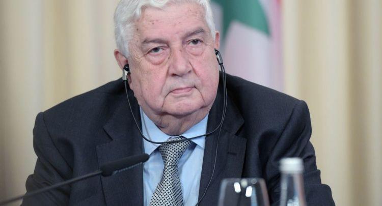 """المعلم لـ""""سبوتنيك"""": داعمو الإرهاب لن يجعلوا 2020 نهاية الأزمة السورية"""