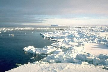 en/news/sience/416700-temperatures-in-antarctica-hit-all-time-high-of-over-20c