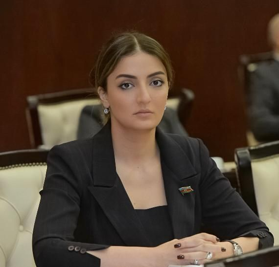 """""""The targeting of the peaceful population by the Armenian military units should be strongly condemned"""" - Konul Nurullayeva"""