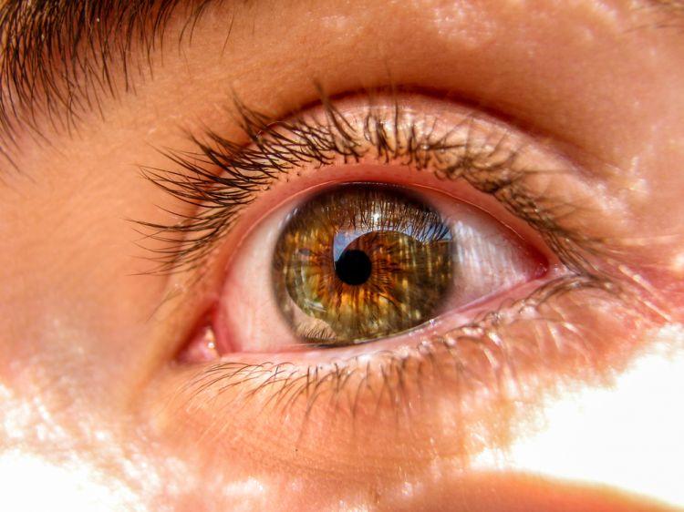 Новый способ диагностирования скорой смерти - по глазам