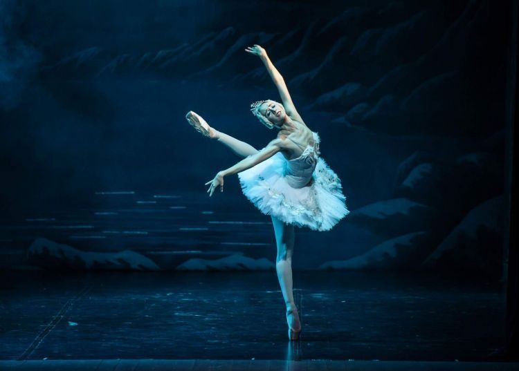 en/news/culture/447583-ballet-is-a-special-world-that-gives-endless-pleasure