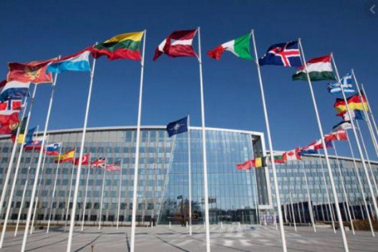 NATO summit kicks off