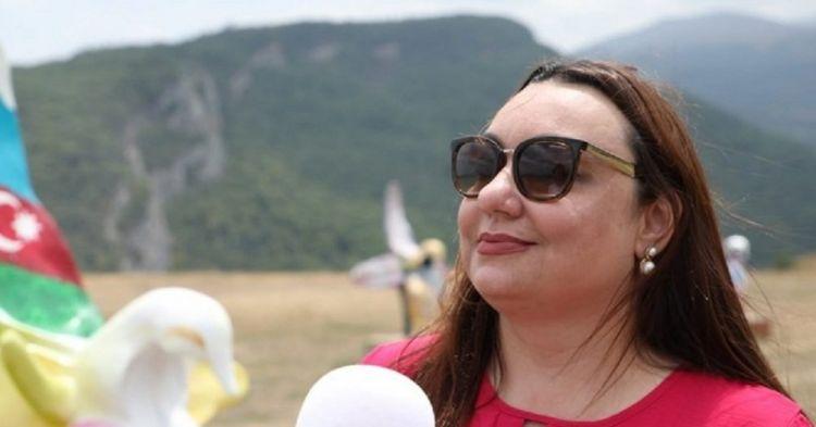 Бразильская журналистка: Мы увидели в Джебраиле лишь руины