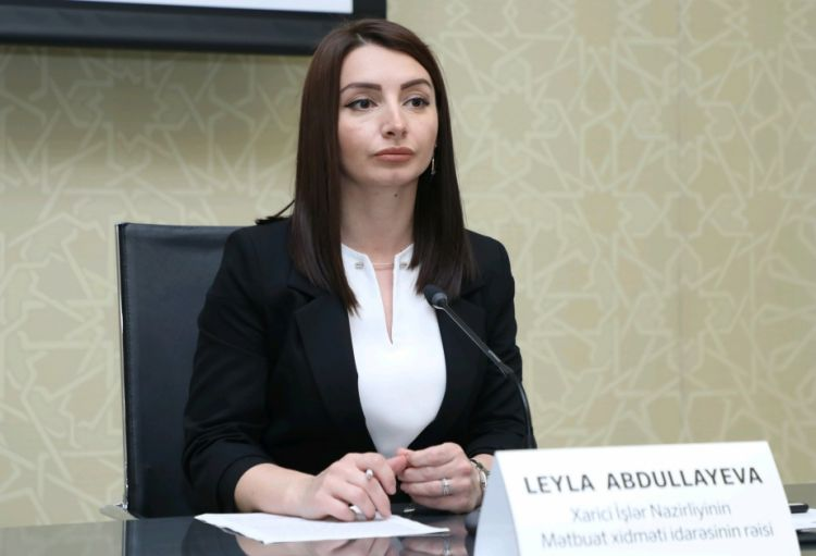 Peace in the region can be achieved on the basis of respect for  territorial integrity - Leyla Abdullayeva