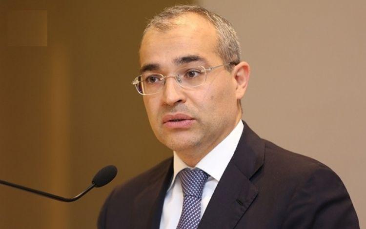 Микаил Джаббаров: С начала года объем господдержки частного сектора Азербайджана превысил 48 млн манатов