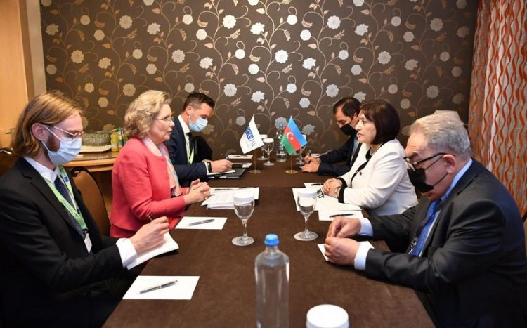 OSCE PA attaches great importance to cooperation with Azerbaijan - Cederfelt
