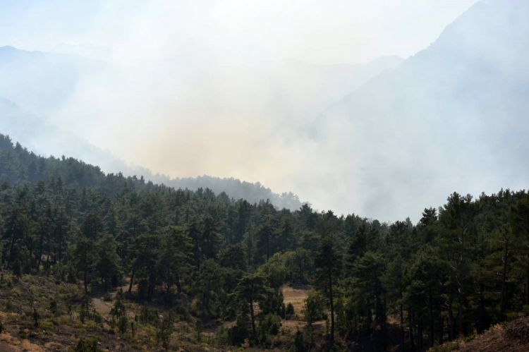 7 Russians arrested over forest fire in Turkey's Antalya